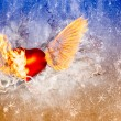 Heart with wings — Stock Photo