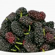 Ripe juicy blackberries — Stock Photo