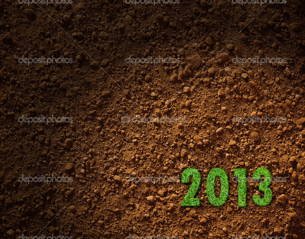 Green grass of 2013 year texture and background  Stock Photo #14609963