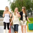 Girls in the park — Stock Photo #3360704