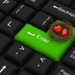 Hearts in being protected in a nest with enter key - Stock Photo