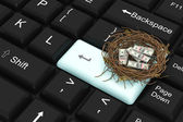 Dollar protected in nest with enter key — Stock Photo