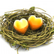 Love heart and nest — Stock Photo #18257255