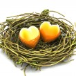Love heart and nest — Stock Photo