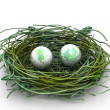 Earth and nest - Stock Photo