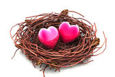 Love heart and nest — Stok fotoğraf
