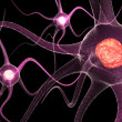 Royalty-Free Stock Photo: Active Neurone
