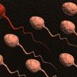 Stock Photo: Sperm cells competing and red one winning