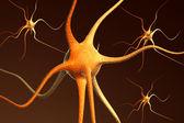 Close-up processar de neurônios neurônio — Fotografia Stock