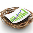 Nest with graph. Growth concept — Stock Photo #19160013