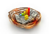 Business graph and dollar on nest. Business concept — Stock Photo