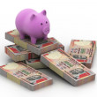 Piggy bank on currency — Stock Photo