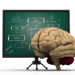 Brain with business strategy board.( brainstorming concept) — Stock Photo