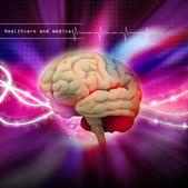Dijital illüstrasyon insan beyninin — Stok fotoğraf