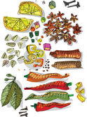 Set of spices - cartoon — Stock Vector