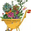 Wheelbarrow with flowers — Stock Vector