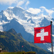 Swiss flag — Stock Photo #12499363