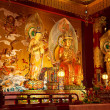 Buddha's Relic Tooth Temple — Stock Photo #12499968