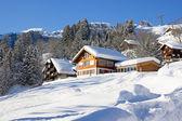 Maison de vacances d'hiver — Photo