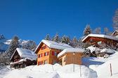 冬の休日の家 — ストック写真