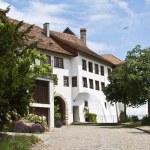 Main entrance to the Regensberg castle — Stock Photo #1523491