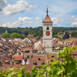 Summer in Schaffhausen — Stock Photo