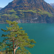 Autumn in alps — Stock Photo #15717663