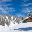 Winter in the alps — Stock Photo #17389045