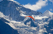 Paragliding in swiss alps — Foto Stock