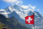 瑞士国旗 — 图库照片