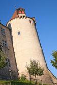 Chateau Gryere — Stockfoto