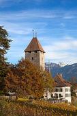 Castillo de spiez — Foto de Stock