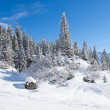 Winter in the alps — Stock Photo #22013851