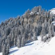 Winter in the alps — Stock Photo #22013873