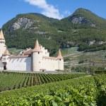 Chateau d'Aigle — Stock Photo #24451203