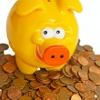 Saving pig — Stock Photo #28033755