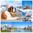 Zwitserland — Stockfoto
