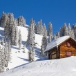 Winter in alps — Stock Photo #34706343