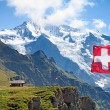 Swiss flag — Stock Photo #34706829