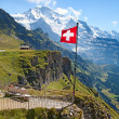 Stock Photo: Swiss flag