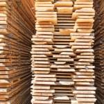 Fresh wooden studs — Stock Photo #34706971