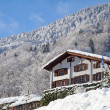 Foto Stock: Winter in alps
