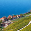 Stock Photo: Lavaux region