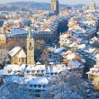 Stock Photo: Bern in winter