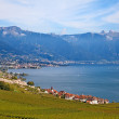 Lavaux region — Stock Photo #39127621