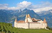 Chateau d'Aigle — Stock Photo