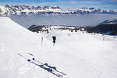 Skiing in alps — Stock Photo