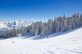 Winter in alps — ストック写真