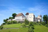 Lenzburg castle — Stock Photo