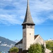 Spiez castle — Stock Photo #45927489